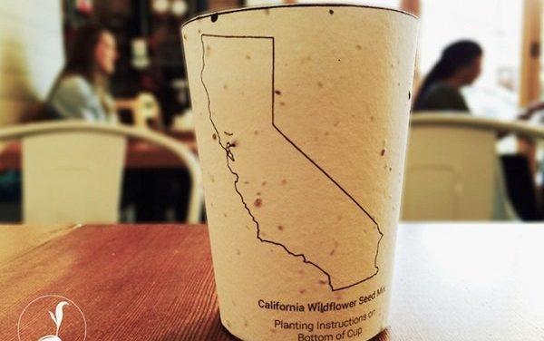 Empresa americana cria copo de café 'plantável'