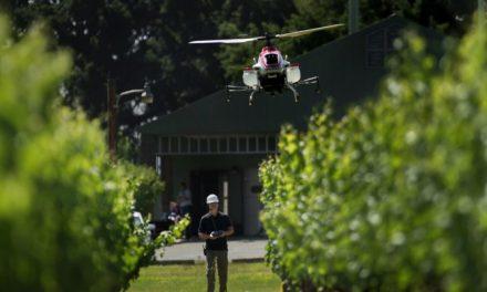 Ex-engenheiro da Nasa quer plantar um bilhão de árvores por ano usando drones