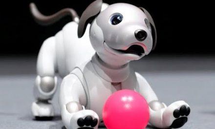 Cão-robô da Sony retorna em versão mais realista