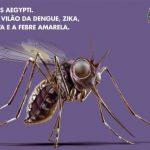 Mosquito virou 'vilão' de crônica policial em propaganda contra dengue da Prefeitura de São Paulo