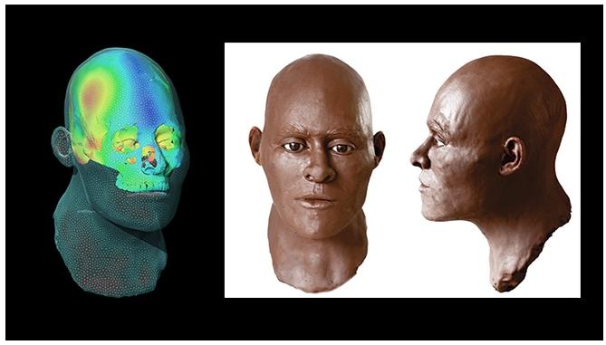 Tecnologia e arqueologia remodelam face de Luzia