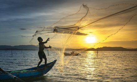 Projeto Saúde da Pele do Pescador é divulgado em revista internacional