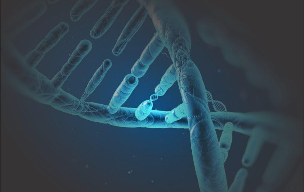 Biotecnologia pode acabar com a fome no mundo