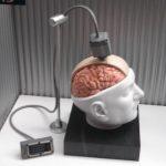 Cientistas descobriram uma forma de traduzir pensamentos em fala gerada por computador