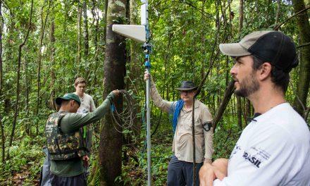 Instituto Mamirauá apresenta tecnologia de monitoramento para a Amazônia