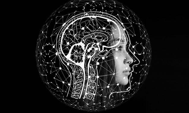 Movimento Brasil Digital e Microsoft assinam parceria para formação em Inteligência Artificial